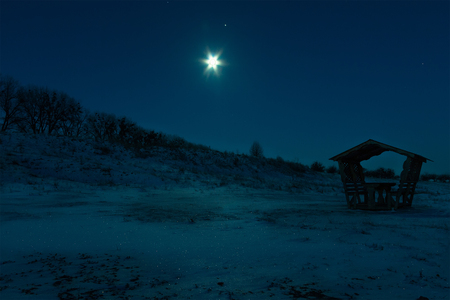 winter night: Frosty winter night with moon in the sky