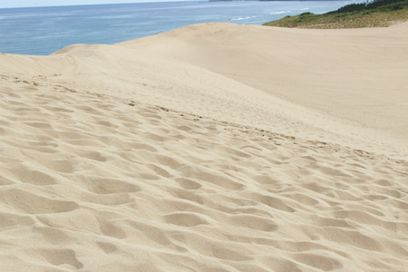 Dune & sea