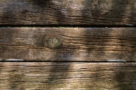 autumn season - old wood texture