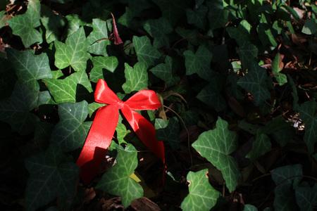 Dolce decorazione natalizia Archivio Fotografico - 90500592