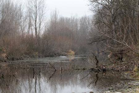 Stagione invernale nel fiume Ticino - Italia Archivio Fotografico - 93951955