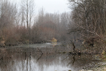 winter season in Ticino river - Italy