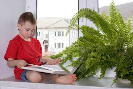 Preschooler boy reading a book by the window in the apartment. photo