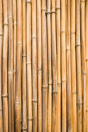 quality natural bamboo background Stock Photo