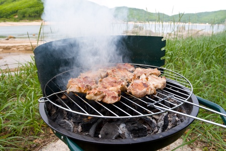 Preparation of a barbecue.On a background the sea.Summer. Stock Photo - 10516925