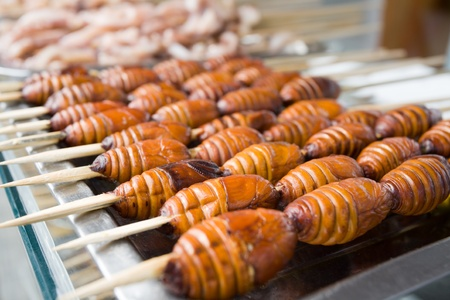 Skewered silkworms are a delicacy in of China and Asia. photo