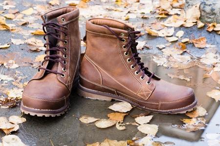 Zapatos nuevos hombres de cuero de entre las hojas de otoño.
