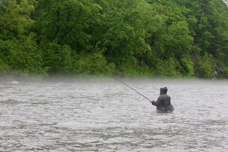 Fisherman catches a salmon river. Fog. Is rain. photo