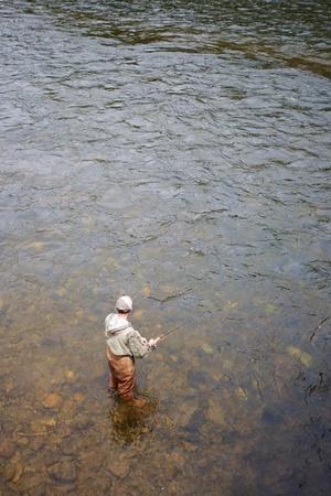 Fisherman catches of salmon on a mountain river Stock Photo - 12600291
