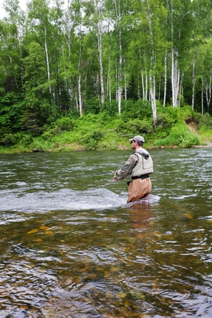 brook trout: Fisherman catches of salmon and trout in a mountain river.