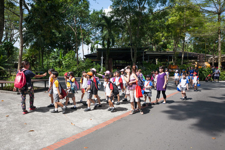 excursions: SINGAPORE - NOVEMBER 07, 2012: Group of elementary school children with teachers on excursions to Singapore Zoo. Singapore Zoo is very popular among tourists and residents of Singapore. Editorial