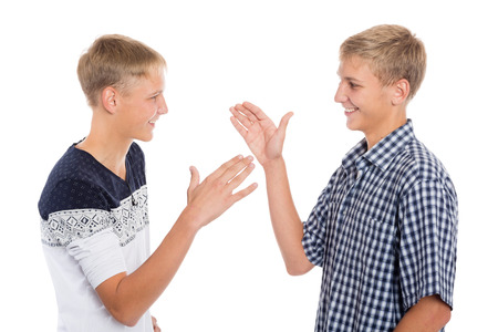 Young cute brothers greet each other hands