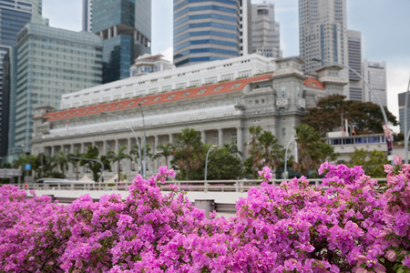 foreground focus: Central business district of Singapore with flowers in the foreground. Focus on flowers. Editorial