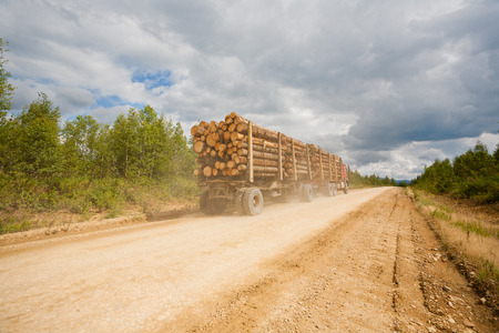 pile: Trailer truck loaded with wooden beams traveling on a dirt road. Stock Photo