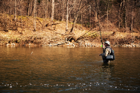 salmon falls: Fisherman caught a grayling on a mountain river