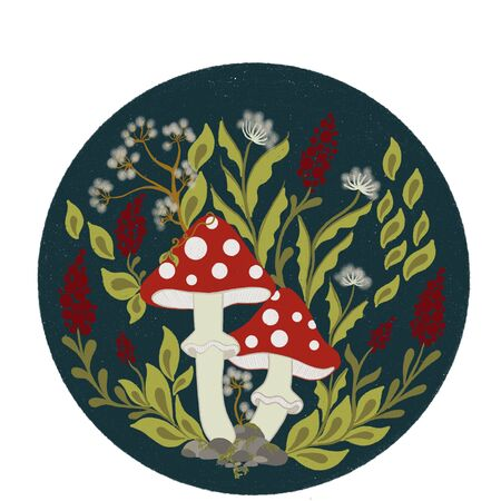 Mushrooms fly agaric, berries and plants on a round turquoise background. Amanita mushrooms. Autumn composition