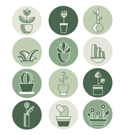 Highlights icon. Stories Covers abstract Icons. Vector icons with potted plants for gardeners and florists