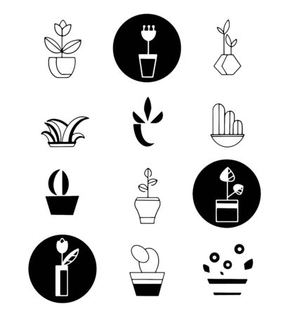 Icons of plants. Vector icons in black and white for decoration
