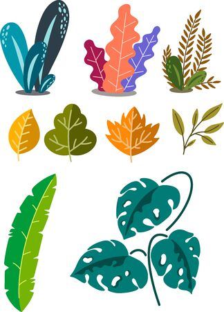 Vector illustration with a set of plants and leaves isolated on a background.