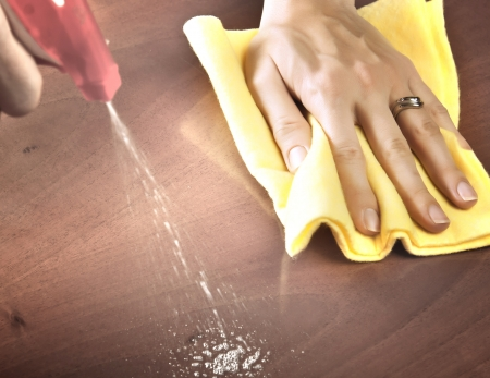 keep: Female hand cleaning dining table