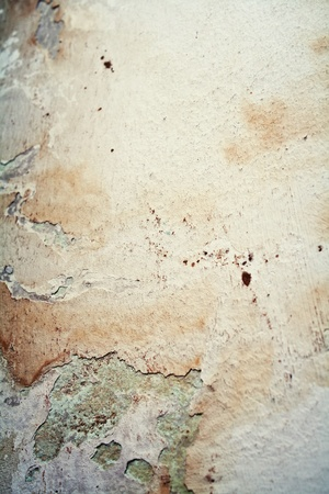rock layer: Old moldy grunge stained paper on wall