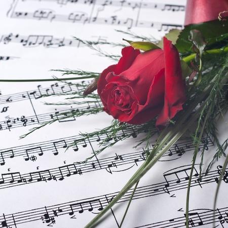 letras musicales: Rosa roja sobre notesheet, cierre encima de la foto
