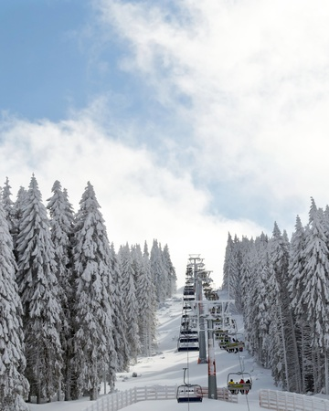 winter ski landscape with pine trees covered with snow and ski lift Stock Photo