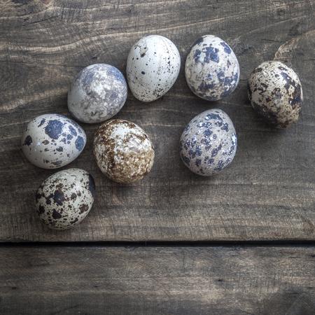 huevos de codorniz: huevos de codorniz sobre la mesa, desde arriba Foto de archivo