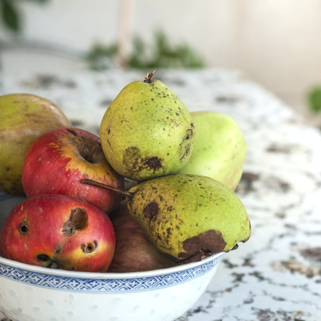 Organic  apples and pears on the table, outdoor