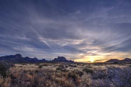 desert vegetation: Looking west towards the sunset in Big Bend National Park.  Chisos Mountains int eh distance with the dry desert vegetation in the forefront.
