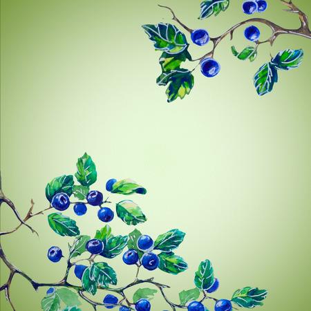 aquarel kaart met bessen Stockfoto