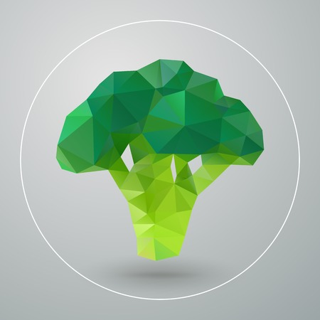 Vector illustration of isolated geometric broccoli composed of triangles Vector