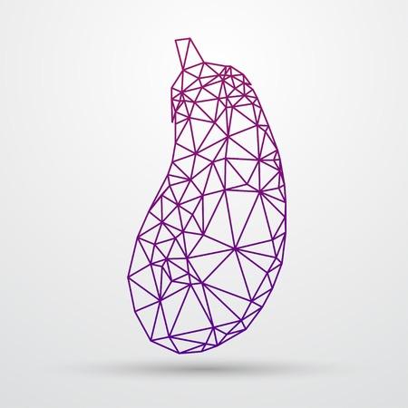 aubergine: Abstract polygonal purple aubergine. Geometric triangle design. Colorfuul line vector illustration