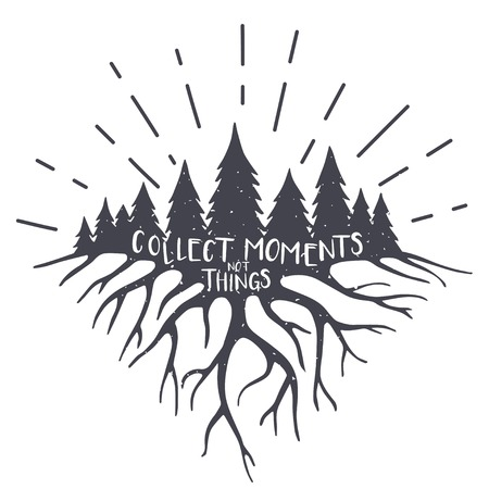 root: Vintage vector illustration with forest, roots and quote. Collect moments not things
