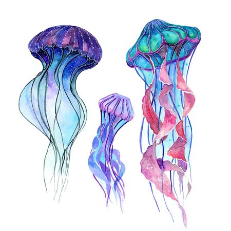 해파리. 수채화 세트입니다. 해양 생물