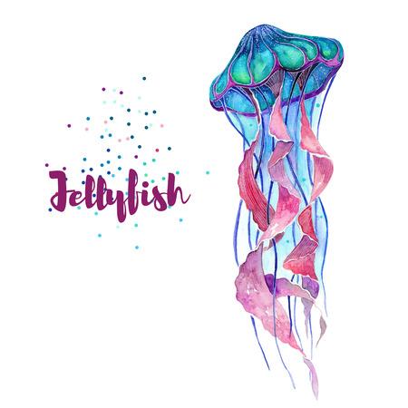 Jellyfish. Watercolor isolate illustration. Sea life