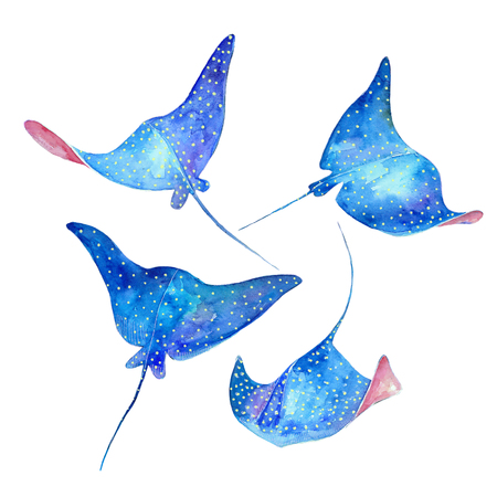 devil ray: Devil fish. Watercolor set. Sea life Stock Photo