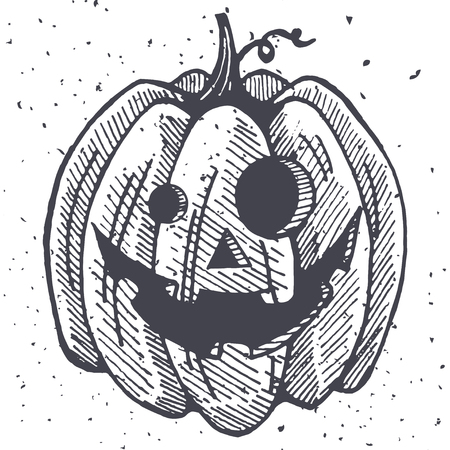 Vector Halloween pumpkins illustration. Handmade graphic