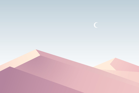 Flat design. Vector illustration - sunset in desert