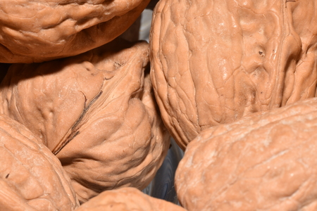 shelling: nuts for shelling Stock Photo