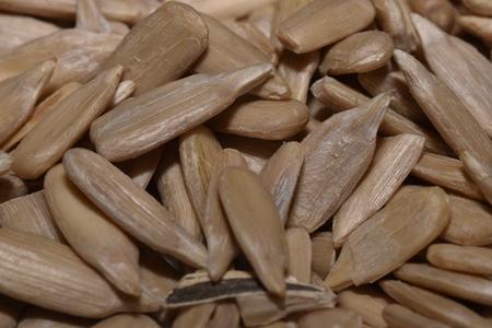 shelled: shelled sunflower seeds Stock Photo