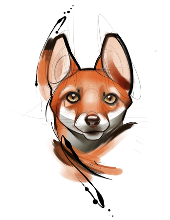 digital illustration of a beautiful Fox head with brush strokes