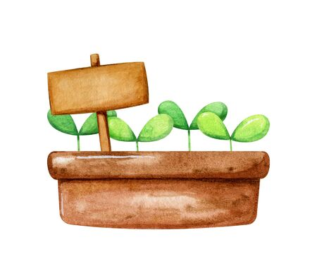 Brown pot with cute little sprout growing in it and a nameplate for inscription. Cartoon hand drawn style in watercolor. Imagens