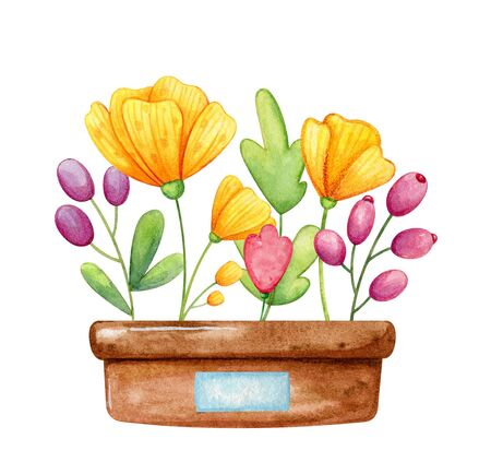 Brown pot with cute little wildflowers growing in it. Cartoon hand drawn style in watercolor.