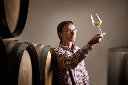 Winemaker analyzing a glass of white wine in cellar. Stock fotó