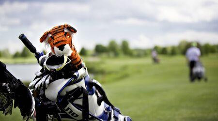 Tiger protection cap on golf club Stock fotó