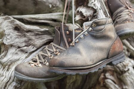 Old worn leather hiking shoes hanging on stump. Stok Fotoğraf