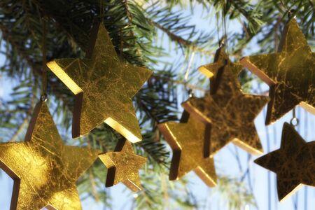 Arrangement of golden Christmas stars hanging from fir branch on blue background