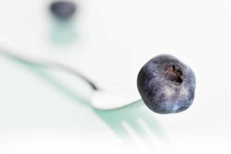 Close up of blueberry on fork isolated on white background.