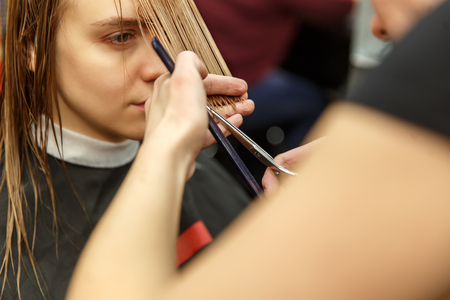 Professional hairdresser dyeing hair of her client in salon. Haircutter cuting hair. Selective focus.